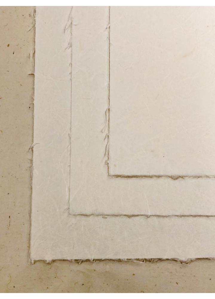 大直和紙 • B5 (楮紙) 信封信紙系列 - 竹
